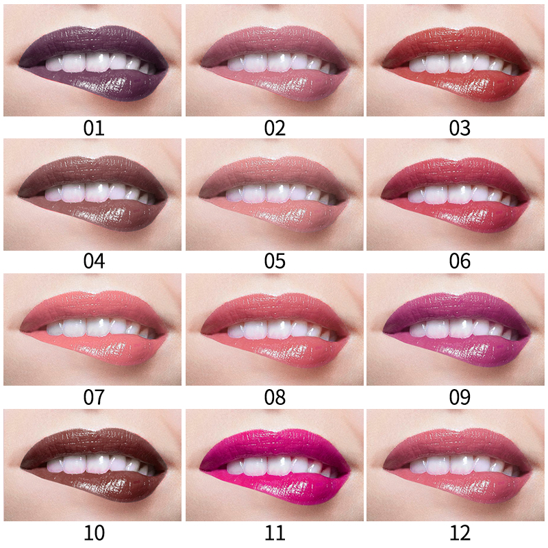 12 colors QIC Sexy Colors Lip Paint Matte Lipstick Waterproof matte velvet lip gloss Liquid Lipstick Hot Long Lasting Lip Gloss