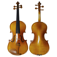 Students Maple Violin 4/4 Stringed Musical Instrument Violino with Case Bow String Full Set Jujube Wood Accessories for beginner