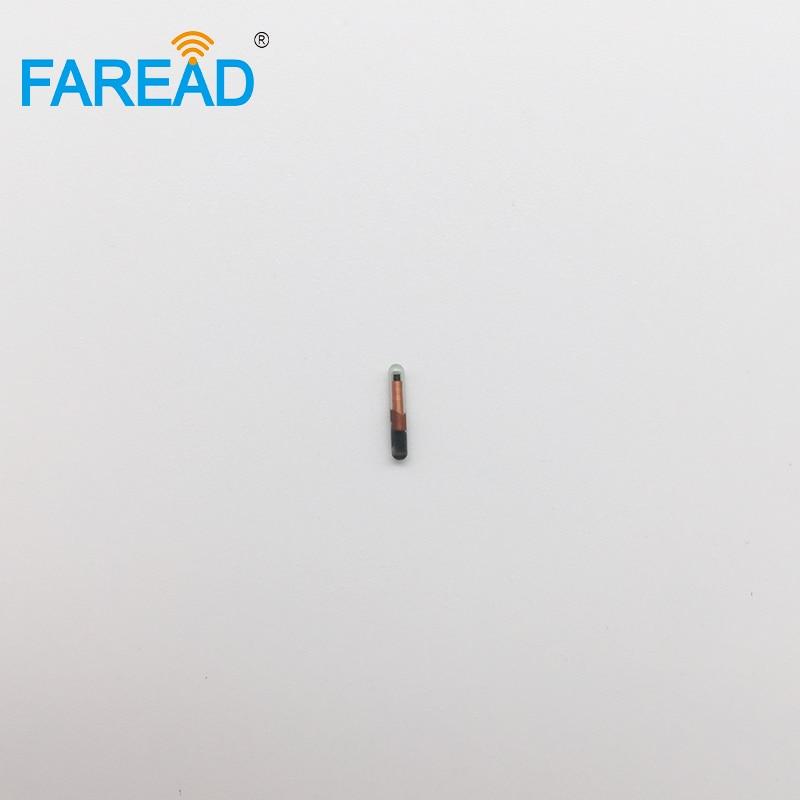 x80pcs živalska RFID oznaka 134,2KHz 1,25 * 7 mm ISO11784 / 785 - Varnost in zaščita - Fotografija 6