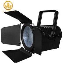 IMRELAX New ZOOM 200W LED Par Light 10 to 60 Degree COB LED Par DMX Studio Spot Light Stage Disco Light