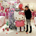 Творческие Воздушные Шары 116 см плюс привет кошка гелием воздушный шар фольги воздушных шаров украшения с днем рождения малыш globos партии балон balao