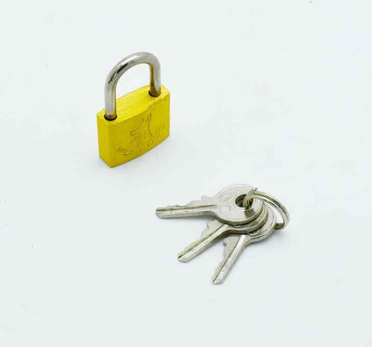 Excellent Quality Brass Padlock Long Shackle Travel Luggage/Suitcase/Gate Lock Security & 3 Keys Durable