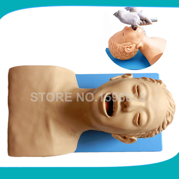 Electronic Tracheal Intubation Simulator Model, Adult Oral and Nasal Intubation Head Trainer iso economic newborn baby intubation training model intubation trainer