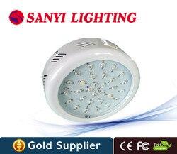 30 W DOPROWADZIŁY Rosną Światła LED Czerwony + Niebieski AC85 ~ 265 V Led Lampy Dla Hydroponika Roślin Warzywa i kwitnienia Roślin|Lampy LED do hodowania roślin|Lampy i oświetlenie -