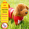 Children Simulation Electric Wire Rope He Dog Will Be Able To Walk To Sing The Intelligent
