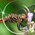 Ультра Тонкий Смолы 1.74 Линзы Асферические Линзы Для Глаз Близорукость (миопия)-600 в 1000 Высокое Качество Очки Анти Blue Ray Линзы Для Мужчин женщины