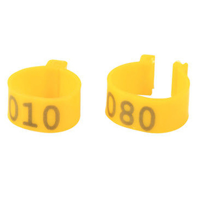 100 Pcs Chicken Leg Bands 1 6cm Chicken Poultry Rings 5 Colors Pigeon Geese  Quail Bird Ring Carry Tools Feeding Logo