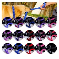 High Quality Upgraded Two Color Collar P Chain Stereotyped Rope Large Dog Leashes Pet Traction Rope