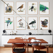 Bianche Wall Beautiful Modern Minimalist Bird Watercolor Canvas Painting Art Print Poster Picture Mural Home Decoration стоимость