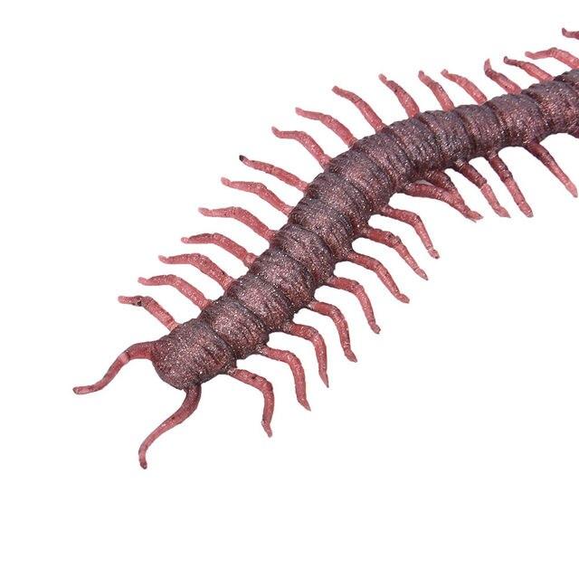 Centipede Bug