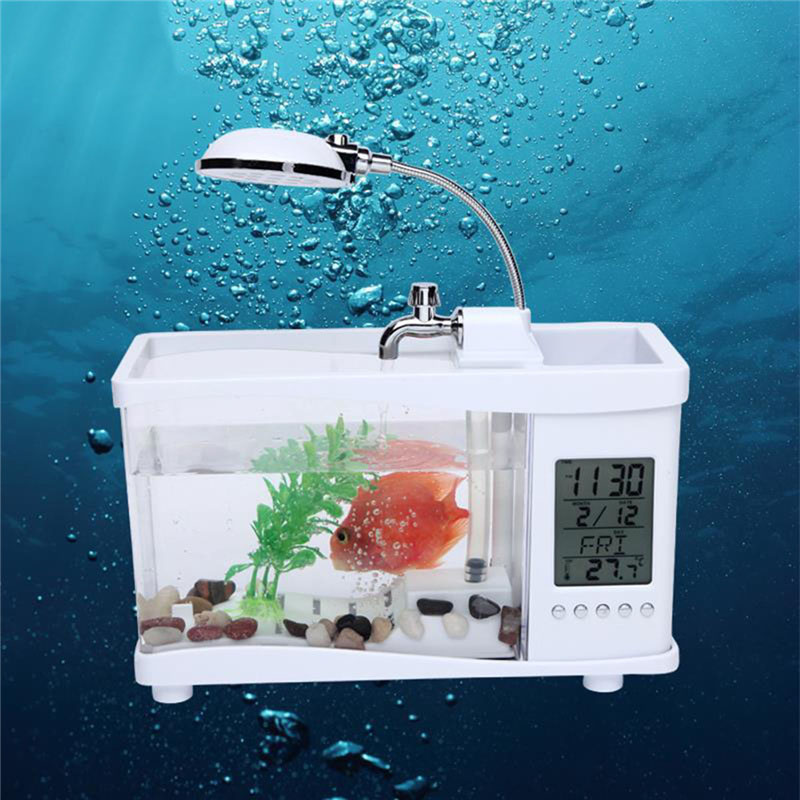 aliexpress : usb acryl mini aquarium aquarium led beleuchtung, Wohnzimmer