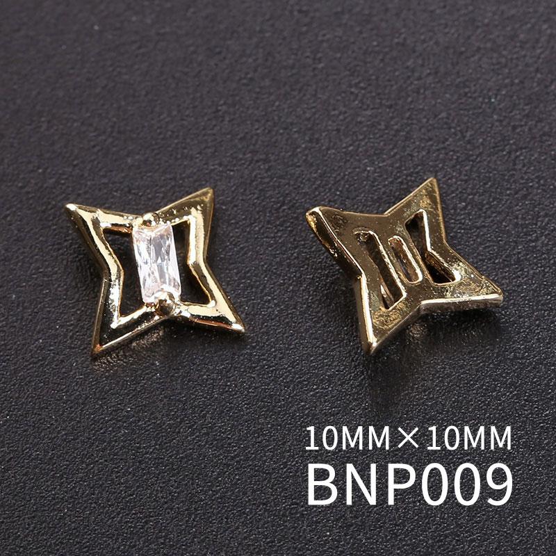 BNP009