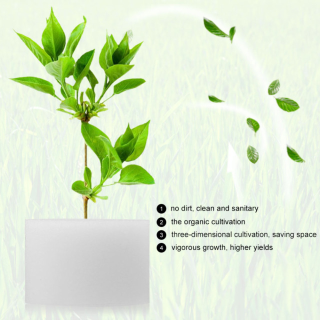 50pcs Soilless Cultivation Of Seedlings Planted Sponge Hydroponic Vegetable Cultivation System Planting Gardening Tool