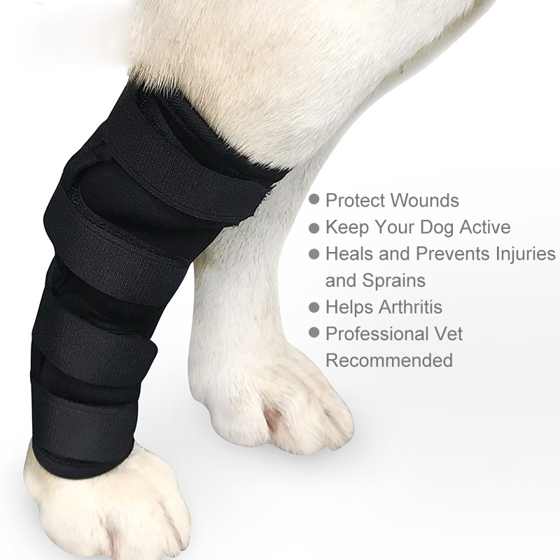 Pet Dog Knee Hock Brace Bandages For Protects Wounds and Injury Dog Leg Hock Wrap Joint Protection Dog Medical Supplies