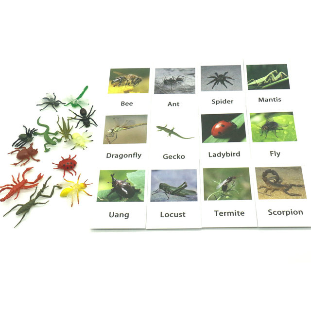 Montessori-Infant-Toys-Insect-Cards-Set-Match-Game-Learning-Educational-Toys-for-Toddlers-Juguetes-Brinquedos-YJ1344H