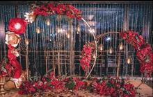 Large iron ring arch outdoor lawn wedding props starry sky