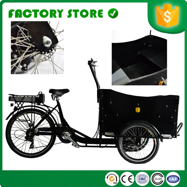 Free Shipping By Ses Cfr Loading 200kg Cargo Bike Pickup Truck