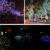 Banquete de Boda de navidad de Secuencia de Hadas Luces de Energía Solar 100 LED Peach Blossom Decorativa Jardín de Césped Patio de Árboles De Navidad