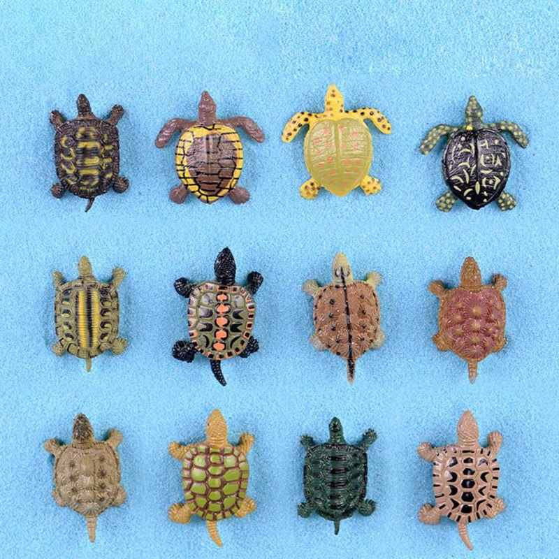 Random Sent  Cute Turtle Moss Micro Landscape Resin Craft Ornament Figurine Decoration