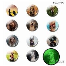 Luminous Lovely Dog Fridge Magnet Set 25 MM Animals Glass Magnetic Refrigerator Magnets Home Decor Puppy Lovers Gift Souvenir