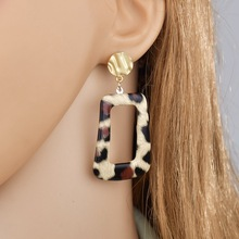 Earrings Python Skin Womens Leopard Animal Creative 2019 Fashion Personality New Snake Scales Design Hot sales