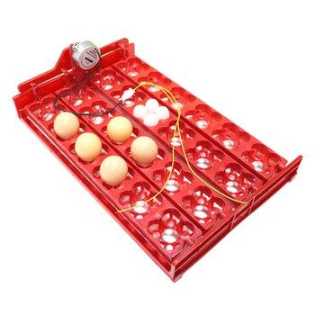 24 uova/96 uccelli Eggstray uccelli incubatrice automatica anatra e oca piccione vassoio per uova di quaglia motore predefinito 220V spedizione gratuita