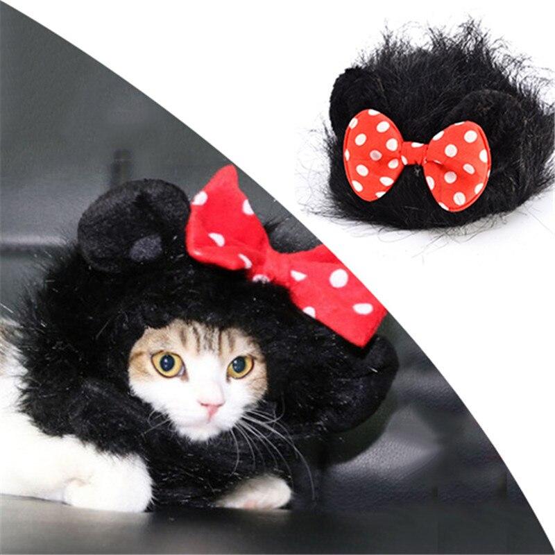 Коты в костюмах с париками