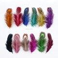 Frete Grátis! 20 pcs 12 Cores de varejo barato frango faisão penas de 4-9 cm pluma linda gaivota decoração accessorie