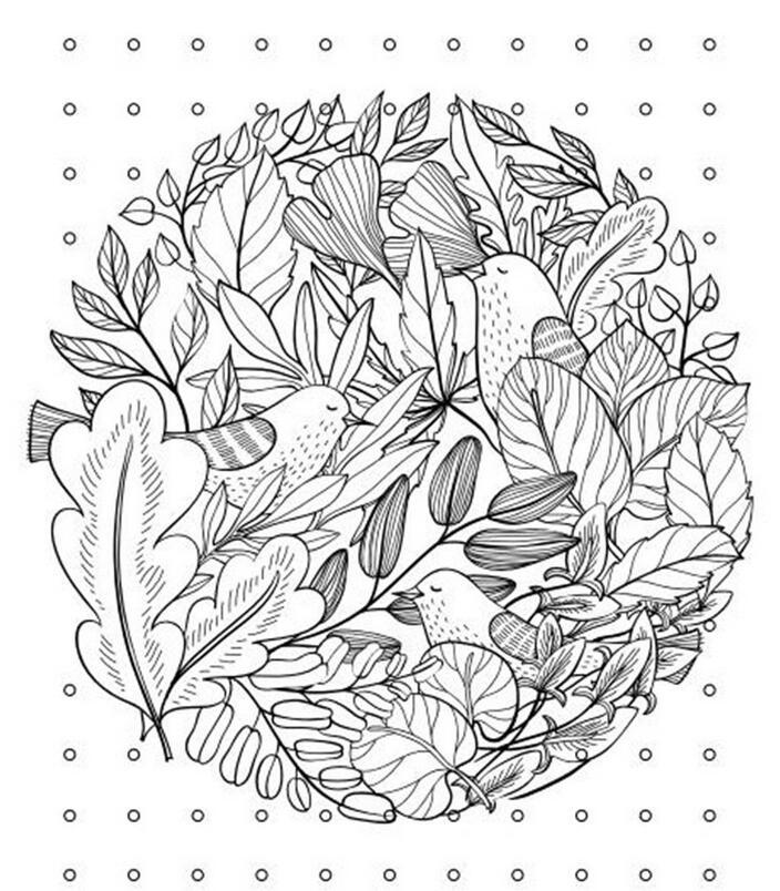 2016 Latest Birds Dreamland Aesthetic Classic Coloring Book Relieve Pressure Secret Garden Series 64 Pages Garden Watermelon Garden Aeratorbook Spiral Aliexpress