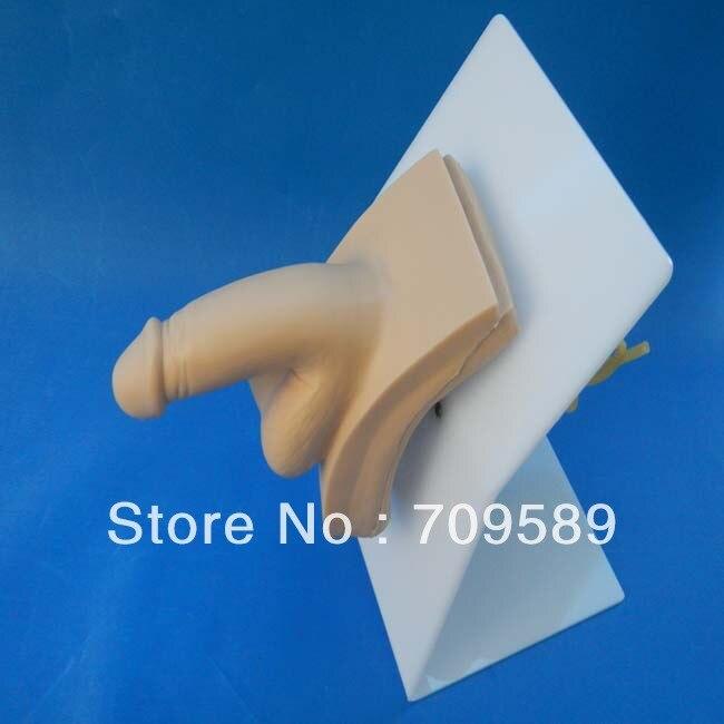 Avanzata wearable maschio cateterismo uretrale simulatorAvanzata wearable maschio cateterismo uretrale simulator