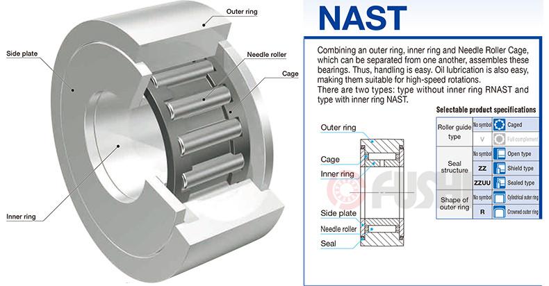 NAST1_