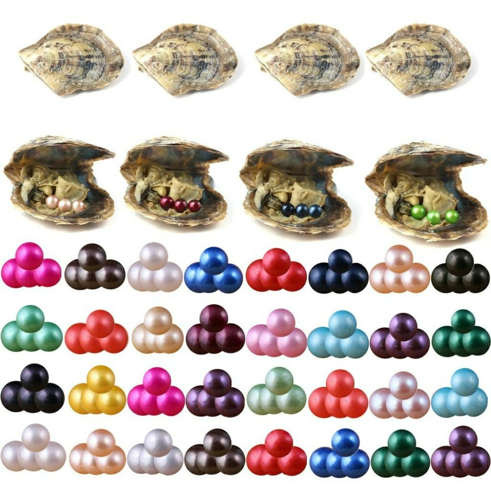 1pc Akoya Oysters Saltwater with 5 Round Pearl 6-7mm Mixed Color Party Gift