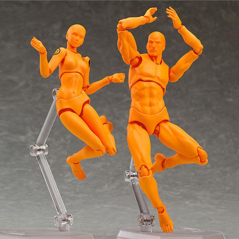 Male Female Action Figure Doll Human Body Model Toys Anime Cartoon Painting Drawing Funny Gadgets male female movable body joint action figure toys artist art painting anime model doll mannequin art sketch draw human body doll