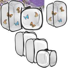 Молитвы Богомол, Палочник насекомых бабочка среды обитания клетки, которые могут изменить свой цвет страховочный кожух для разведения клетки сетчатая ткань