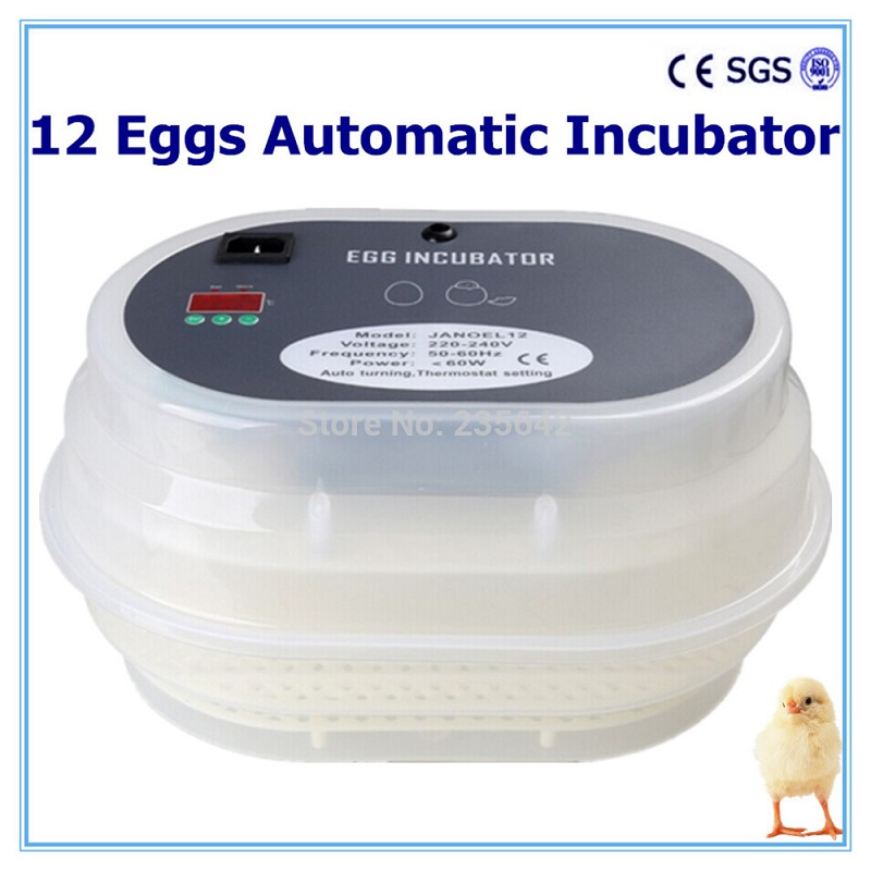 12 Automatic egg  Incubator Mini  Hatchery machine  For Chicken Duck Goose Quail Birds   turn eggs 15 19 25 37 heads droplight clear bubble ball goose egg birds eggs duck egg double deck glass ball transparent pendant light