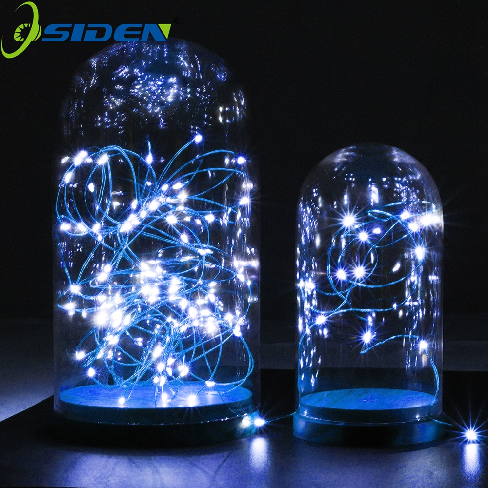 OSIDEN 33FT 10M 100LED 5M 50LED 5V USB LED String Kobber Wire Fairy String Lights Tilføj RF Controller Christmas Wedding Decoration