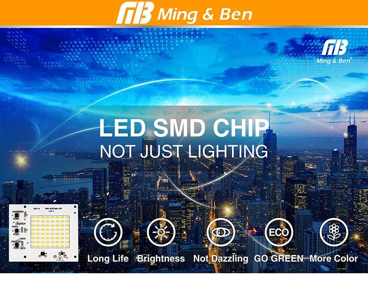 LED Lamp Chips_00