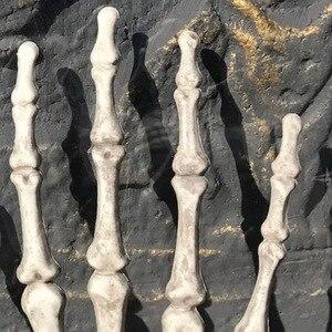 Image 3 - 1 par de decoração realista, tamanho de vida, esqueleto, mãos, plástico, falso, osso de mão, zumbi, festa, adereços assustadores