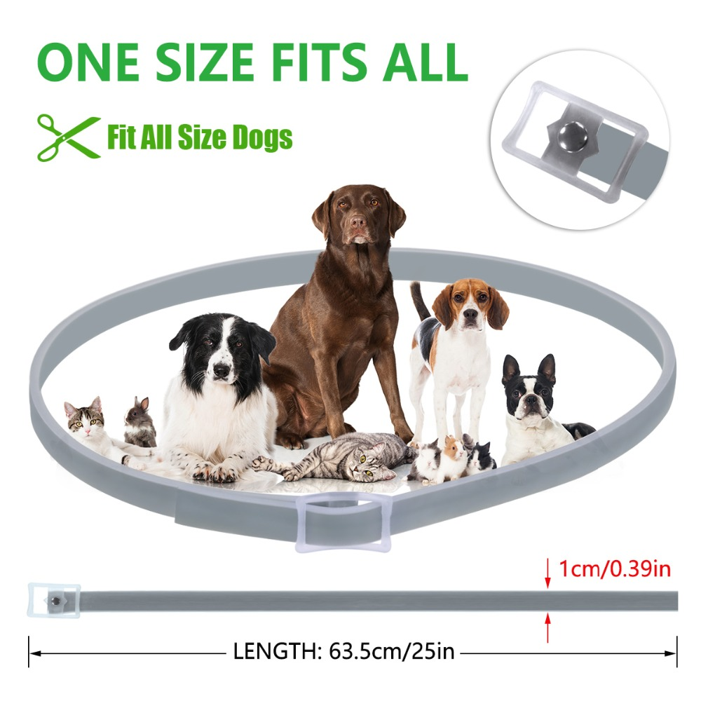 Dewel Anti Flea Ticks Insect Mosquitoes 8 Months Protection Waterproof Long Lasting Dog Collar Custom Puppy Cat Pet Collars 4