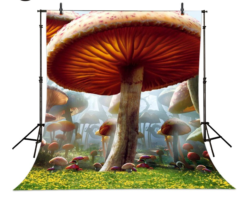 Alice In Wonderland  Mushroom Forest Lawn backdrop  Vinyl cloth High quality Computer printed children  Backgrounds wild edible mushroom in forest ecosystem