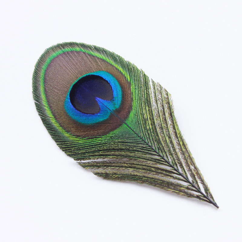 10pcs Peacock Tail Eye Feathers Craft Mask Millinery Decor 10-12cm