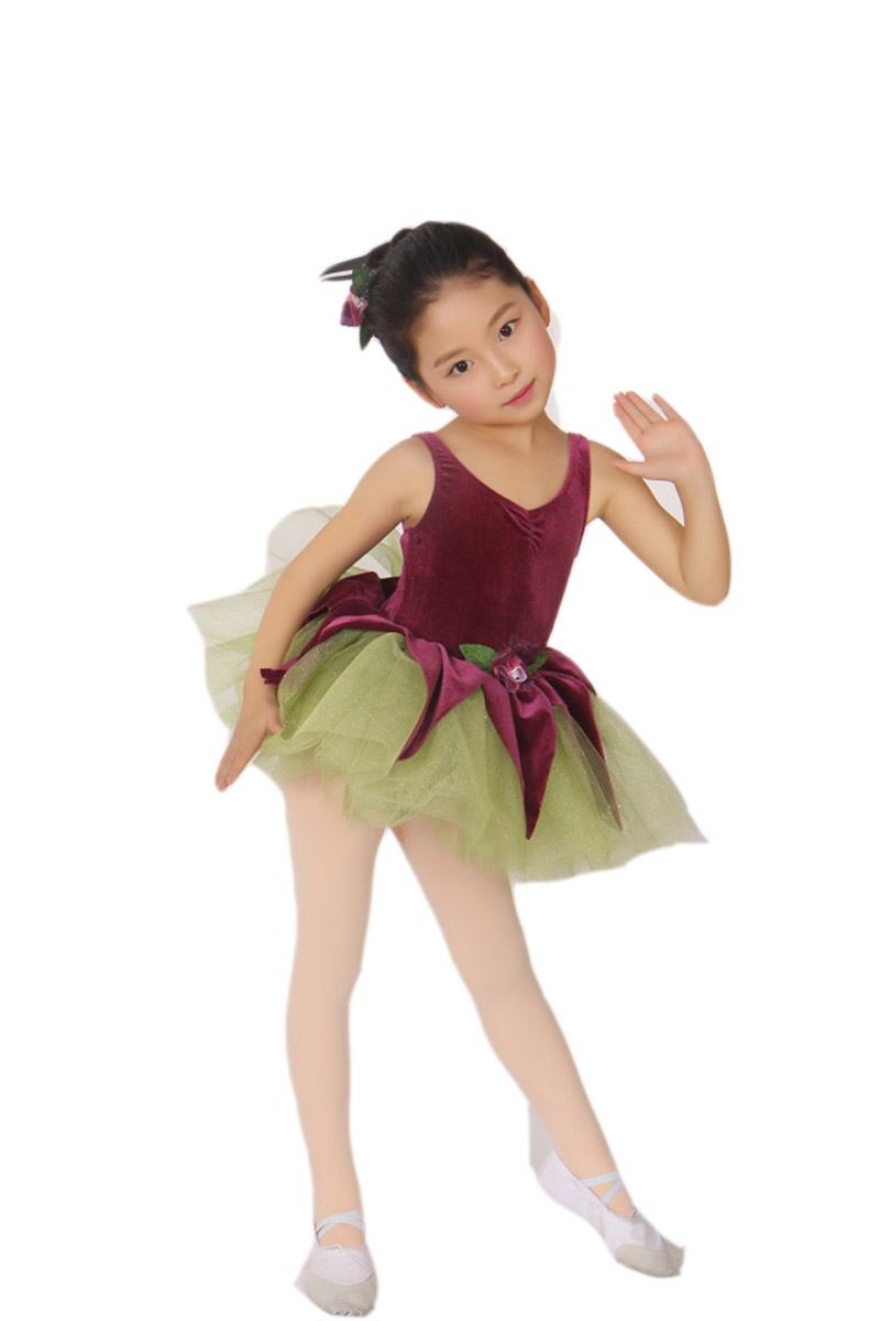Kids Dresses for Girls The New Spring Summer Leaves Child Female Dress Hit Color Ballet Clothes Costumes Adult Ballerina Tutu