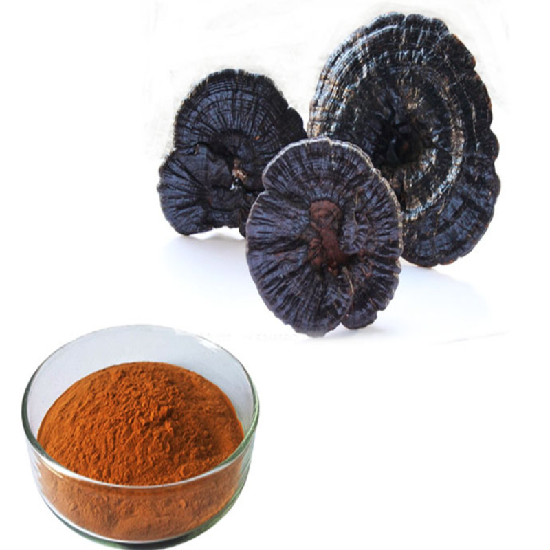500gram Natural Lingzhi Spore Powder Reishi Mushroom Broken Spore Powder 98 Wall breaking