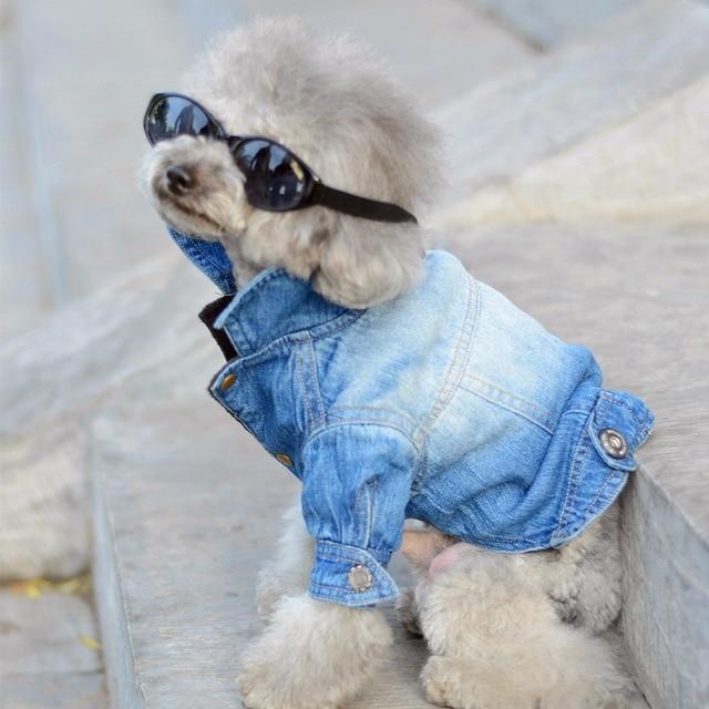 7f2deb26db26 Dog Clothes Denim jacket Fashion Pet Clothes For Yorkshire Chihuahua ...