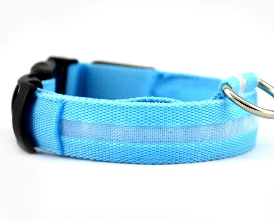 LED Safety Dog Collar USB Re-Chargeable 5 Colours! - BestPet