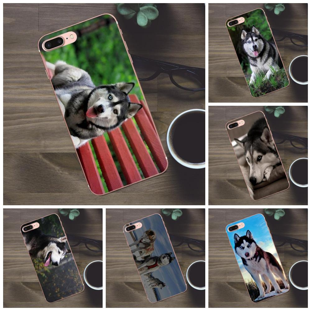 For Huawei G8 Honor 5C 5X 6 6X 7 8 9 Y5II Mate 9 P7 P8 P9 P10 P20 Lite Plus 2017 Soft Rubber Shell Phone Case <font><b>Siberian</b></font> <font><b>Husky</b></font> Dog image