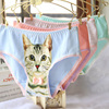 3D Cat Printing Panty Trousers Intimates briefs 4