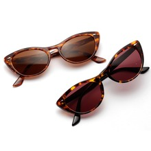Trendy Cat Eye Sun Glasses Colourful Personalized Studded  Frame PC Lens AC Sunglasses for Women UV400 2019 New Arrival