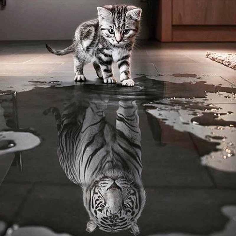 Piața completă 5D DIY Pictură de diamant de pisică Tigru Animale - Arte, meșteșuguri și cusut - Fotografie 2