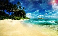 Ziemi morze plaża oceanu palm tree maui tło wysokiej jakości wydruku komputerowego tła ślubu